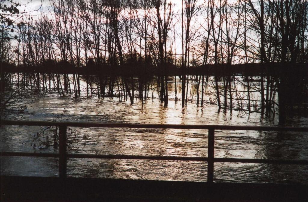 Die Pleiße bei Hochwasser im Januar 2011.