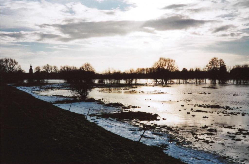 Die Serbitzer Wiesen bei Hochwasser im Januar 2011.