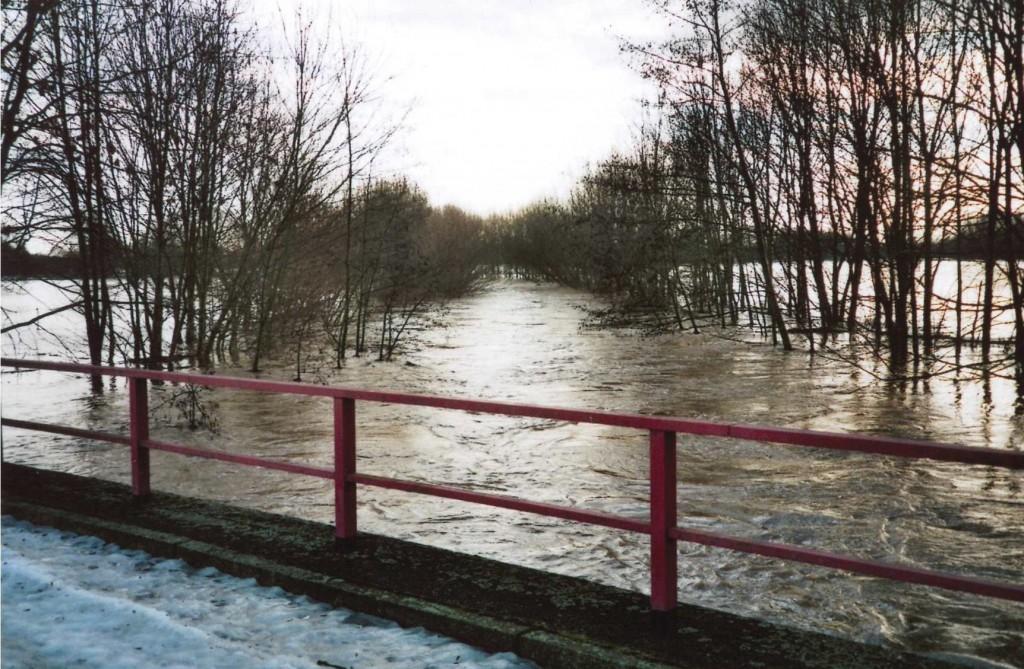 Blick von der Pleißebrücke bei Hochwasser.