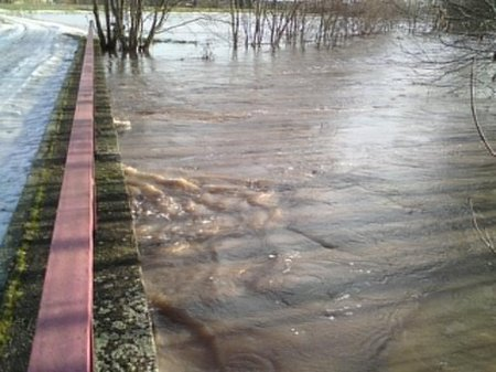 Pleißenbrücke auf den Serbitzer Wiesen am 08.01.2011