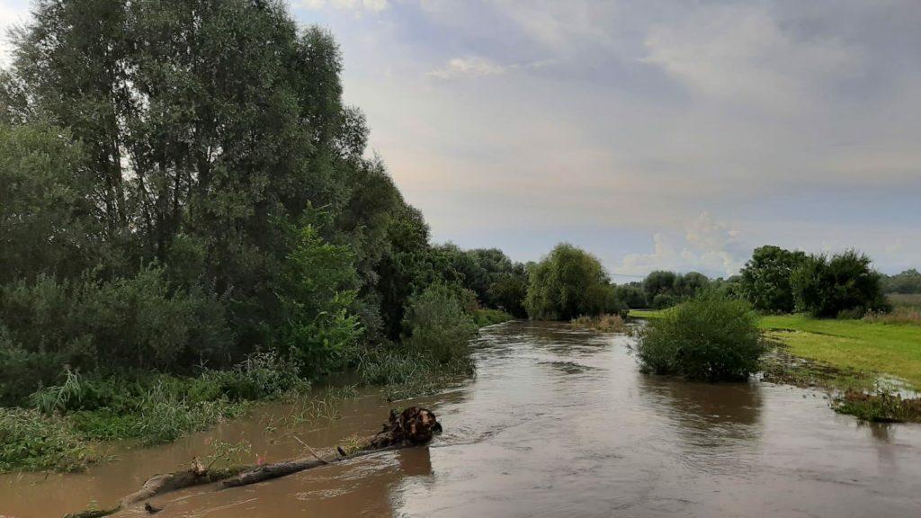 Pleiße mit Hochwasser