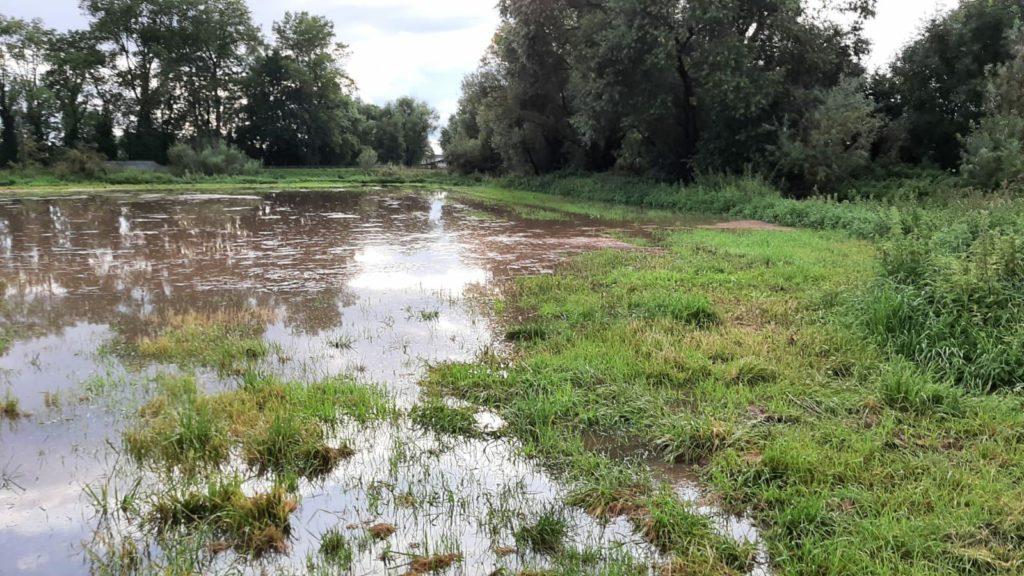überflutete Wiesen bei Windischleuba